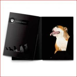 PASTAS Cartão 300g/m² Formato: 47,3x39,2 cm Aberto / 22x31 cm Fechado 4x4 Laminação BOPP Fosca Frente e Verso c/ Verniz UV Local Frente Corte vinco