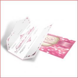 ROMÂNTICOS 03  Envelope Aspen Perolizado 180g 110x210mm 4x4 Sem Verniz Corte e Vinco Padrão